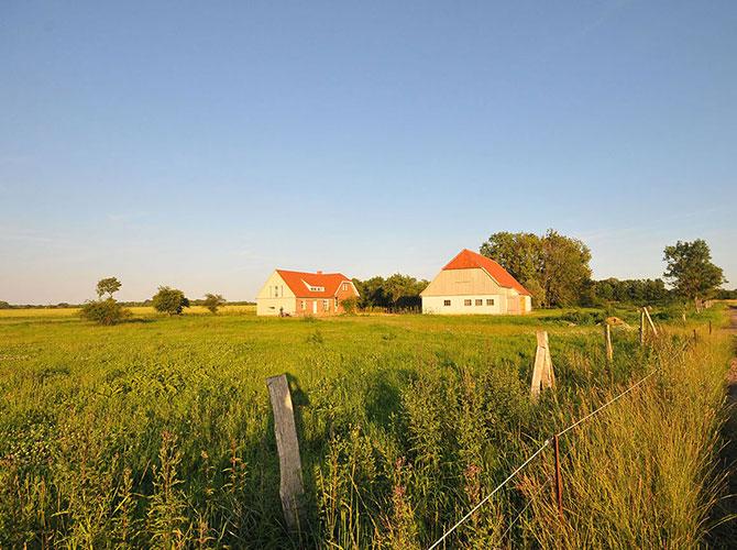 Ferienhauses auf Rügen